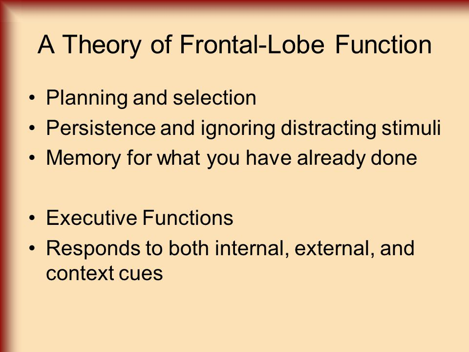 A Theory of Frontal-Lobe Function