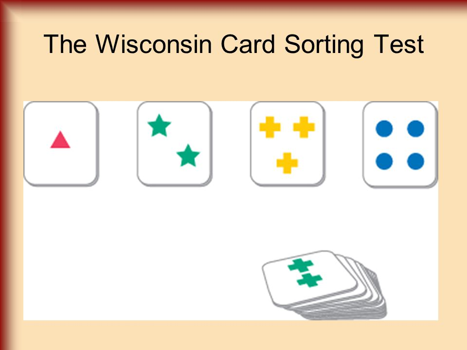 IE349-Card Sorting Experiment