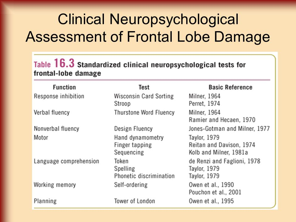 Clinical Neuropsychological Assessment of Frontal Lobe Damage