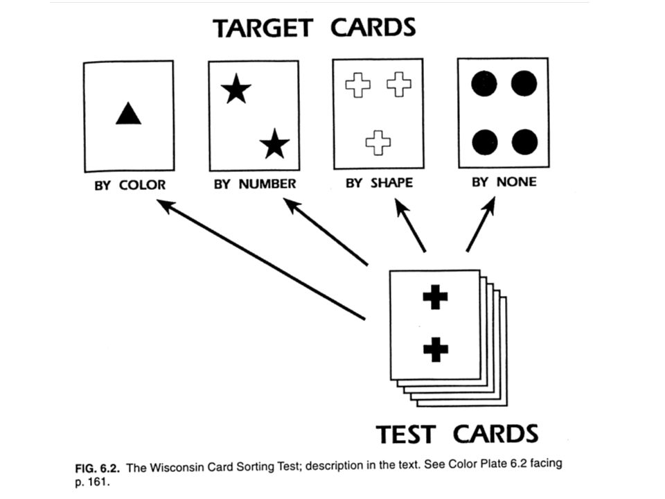 The subject is shown 4 target cards on a surface.
