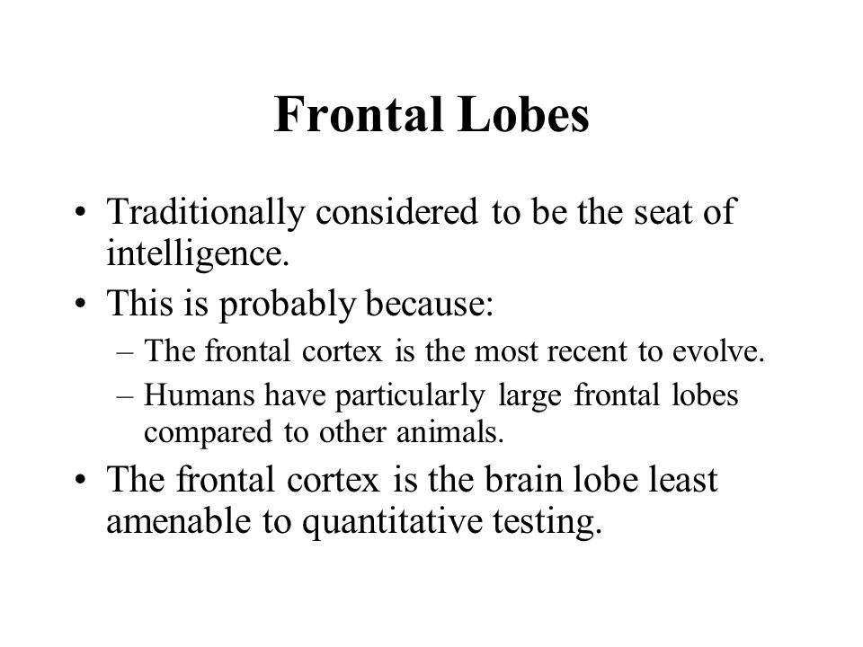 Frontal Lobes Traditionally considered to be the seat of intelligence.