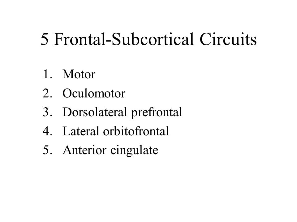 5 Frontal-Subcortical Circuits
