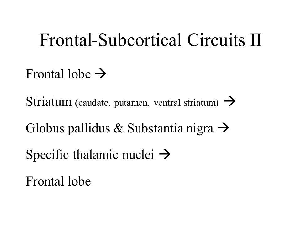 Frontal-Subcortical Circuits II