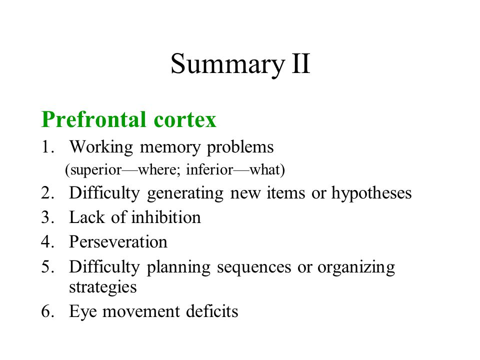 Summary II Prefrontal cortex Working memory problems