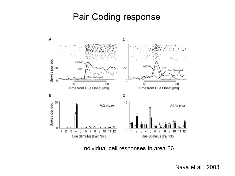 Pair Coding response Individual cell responses in area 36