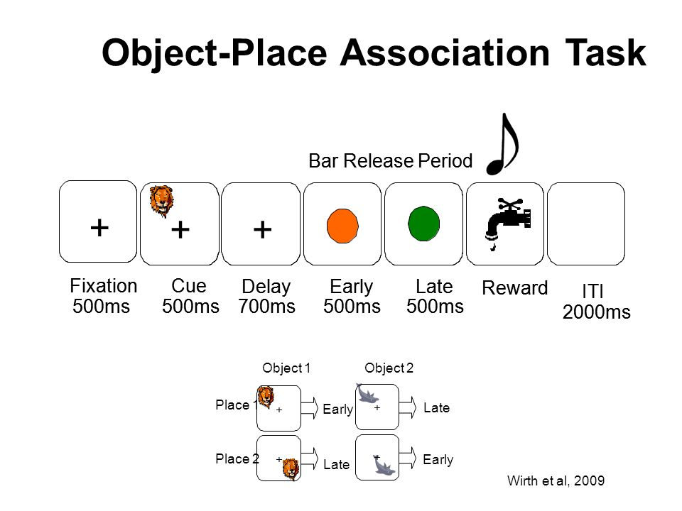 Object-Place Association Task
