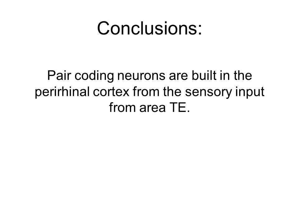 Conclusions: Pair coding neurons are built in the perirhinal cortex from the sensory input from area TE.