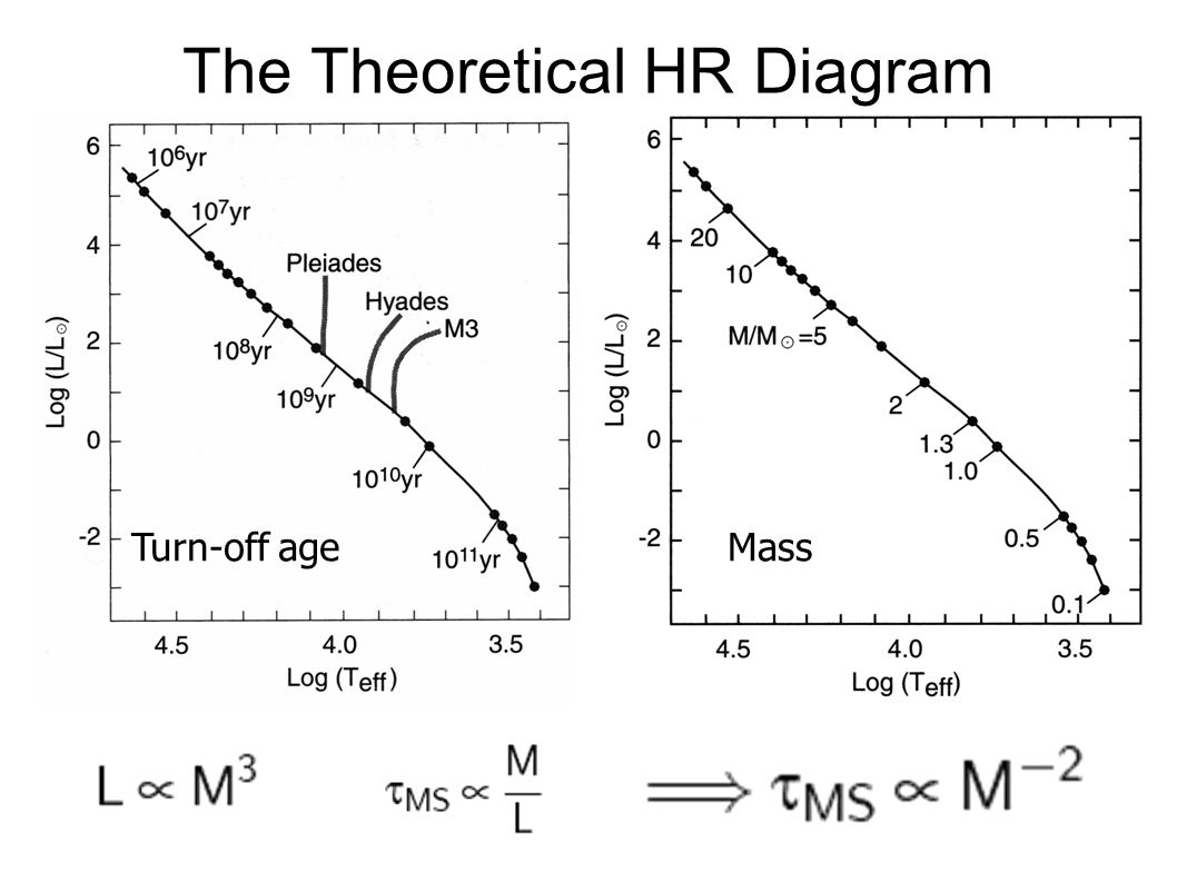 The Theoretical HR Diagram