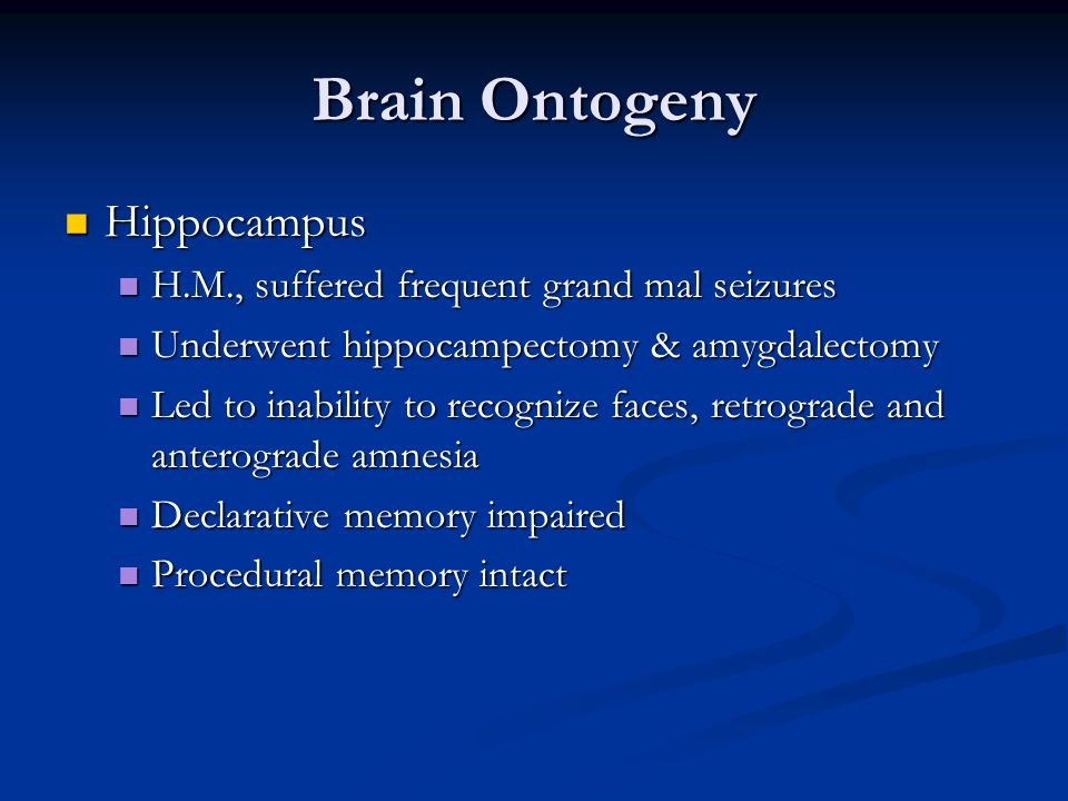 Brain Ontogeny Hippocampus H.M., suffered frequent grand mal seizures