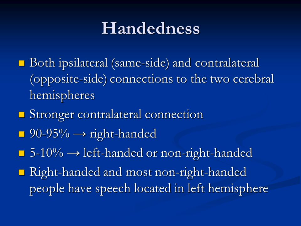 Handedness Both ipsilateral (same-side) and contralateral (opposite-side) connections to the two cerebral hemispheres.