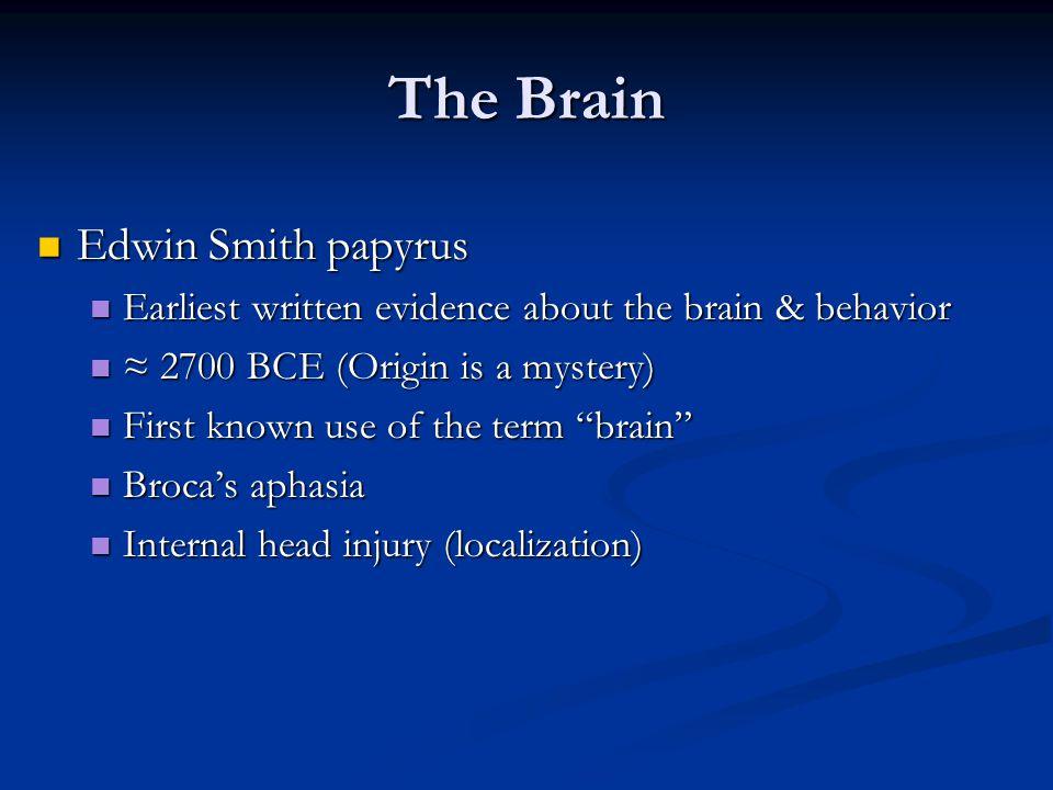 The Brain Edwin Smith papyrus