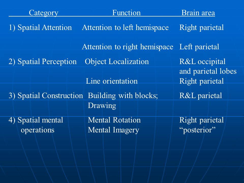 Category Function Brain area