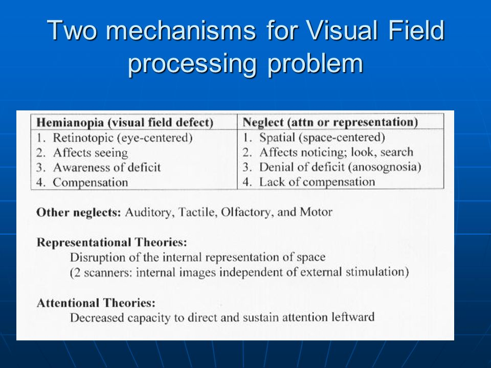 Two mechanisms for Visual Field processing problem