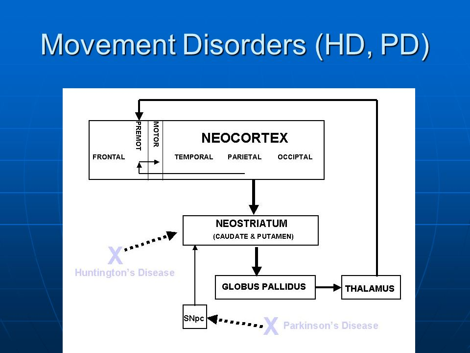 Movement Disorders (HD, PD)
