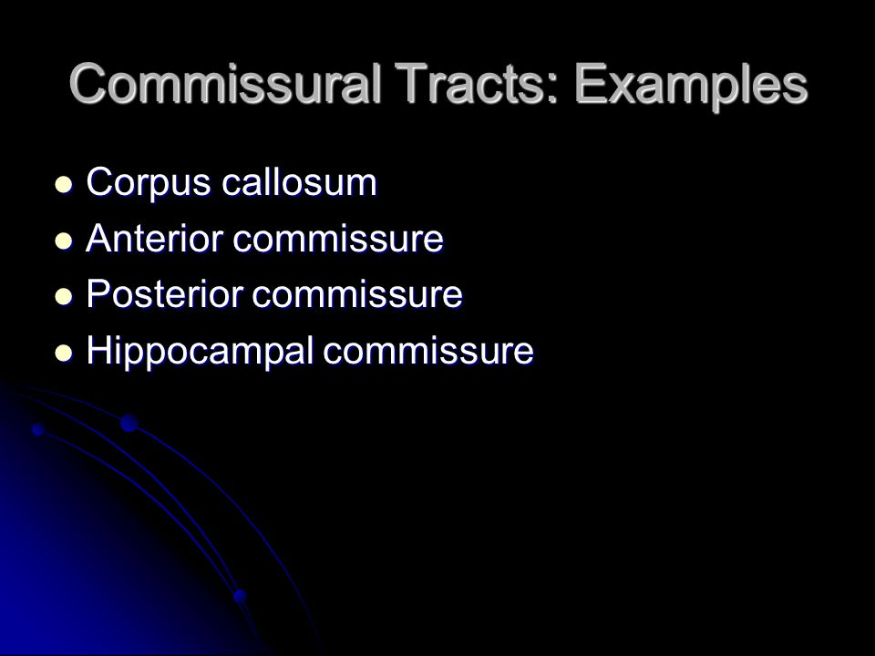 Commissural Tracts: Examples
