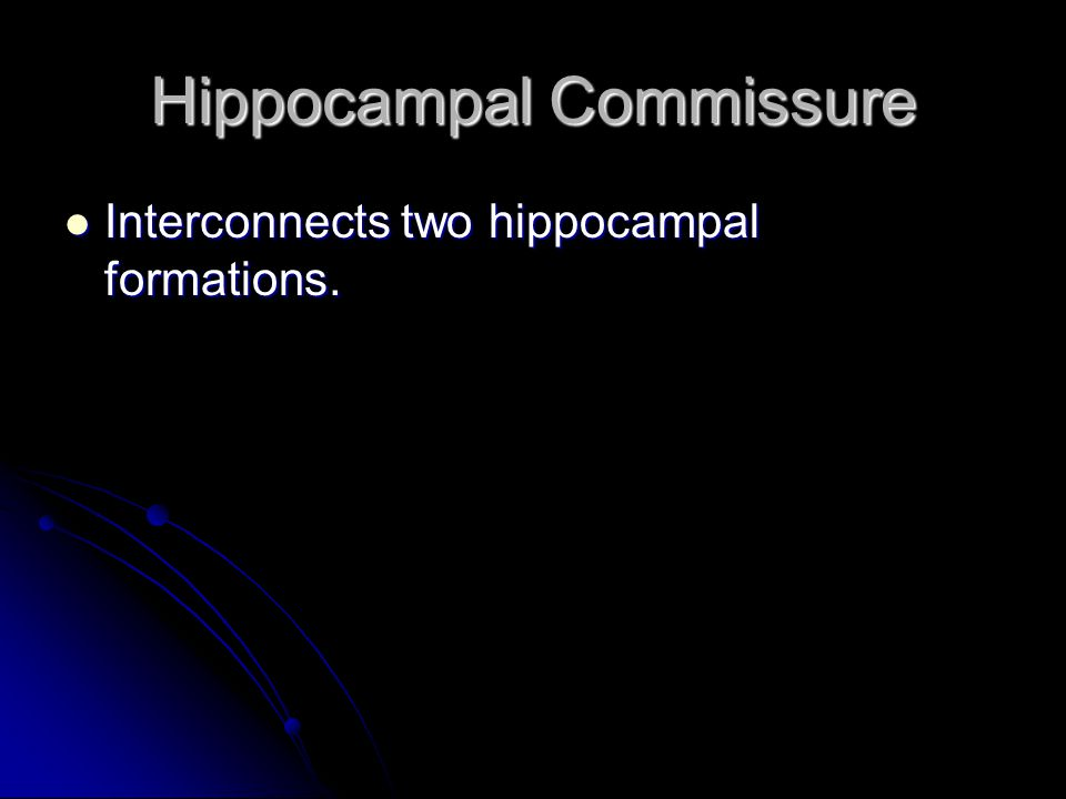 Hippocampal Commissure
