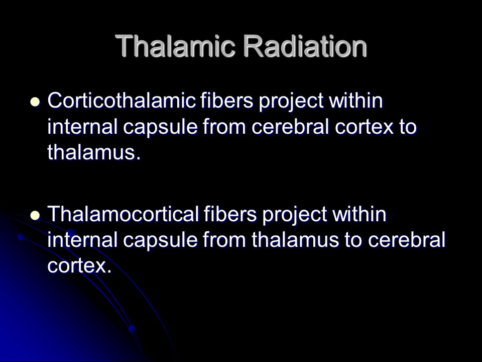 Thalamic Radiation Corticothalamic fibers project within internal capsule from cerebral cortex to thalamus.