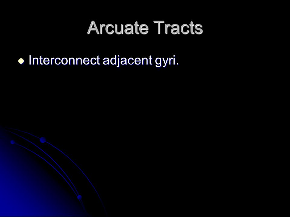 Arcuate Tracts Interconnect adjacent gyri.