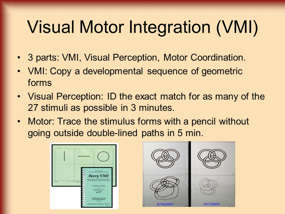 Visual Motor Integration (VMI)