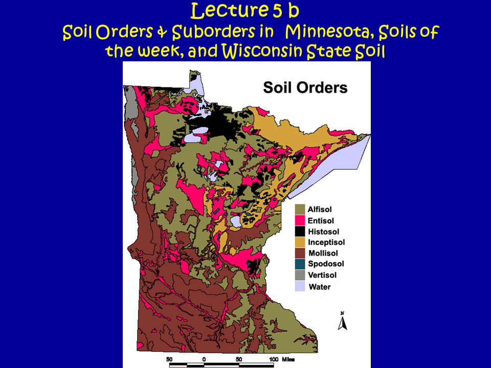 Lecture 5 b Soil Orders & Suborders in Minnesota, Soils of the week, and Wisconsin State Soil
