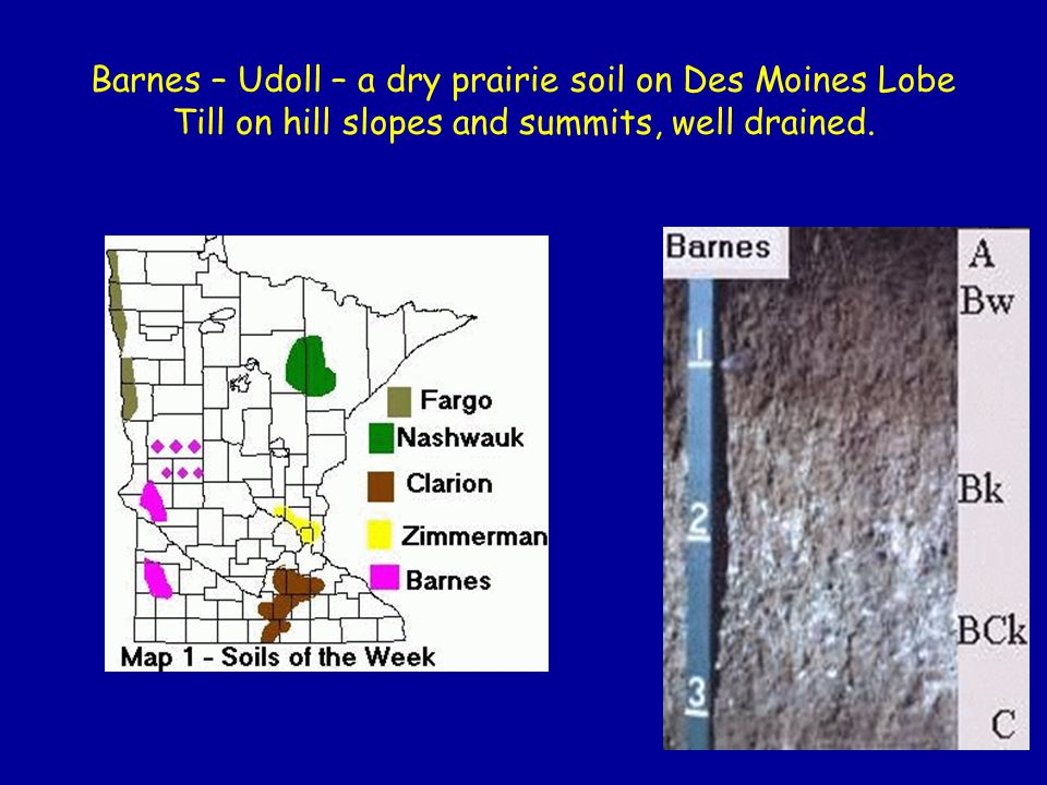 Barnes – Udoll – a dry prairie soil on Des Moines Lobe Till on hill slopes and summits, well drained.