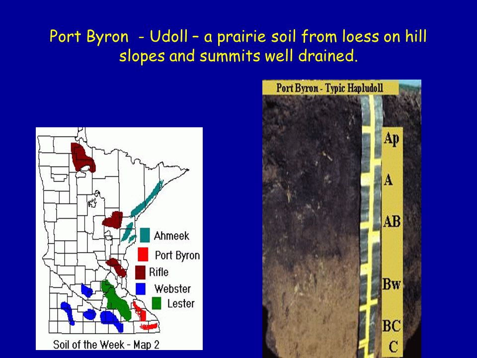 Port Byron - Udoll – a prairie soil from loess on hill slopes and summits well drained.