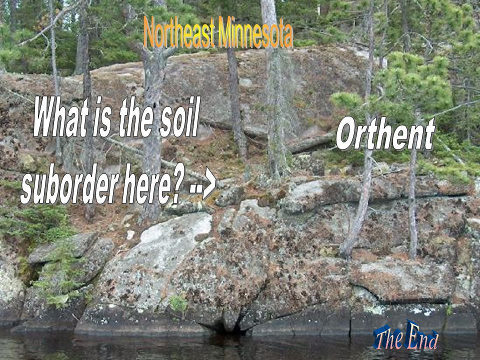 Orthent The End What is the soil suborder here --> The End