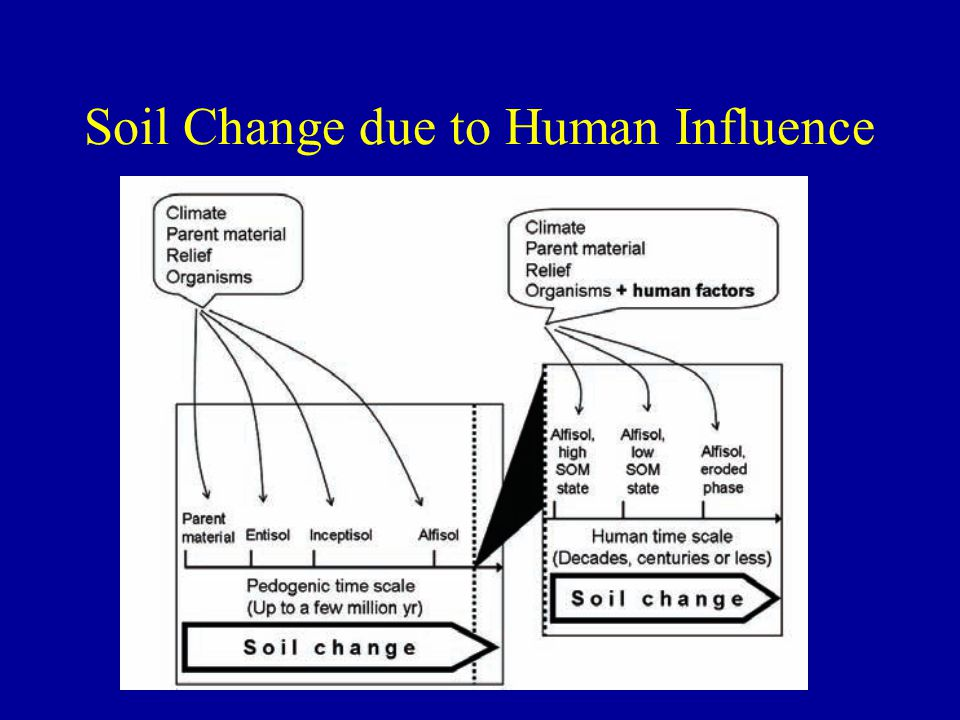 Soil Change due to Human Influence