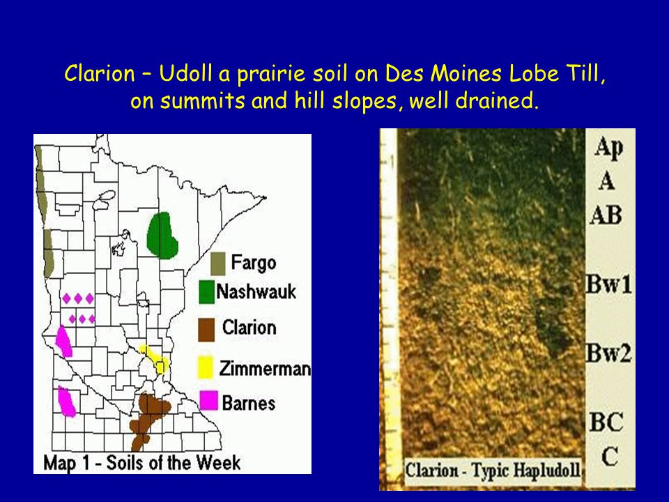 Clarion – Udoll a prairie soil on Des Moines Lobe Till, on summits and hill slopes, well drained.