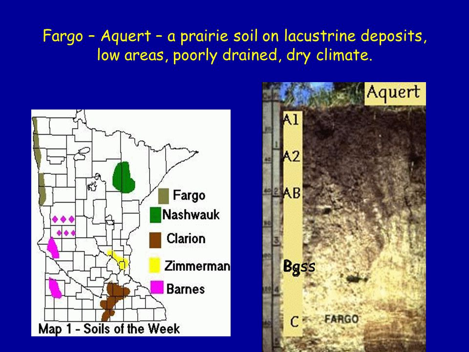 Fargo – Aquert – a prairie soil on lacustrine deposits, low areas, poorly drained, dry climate.