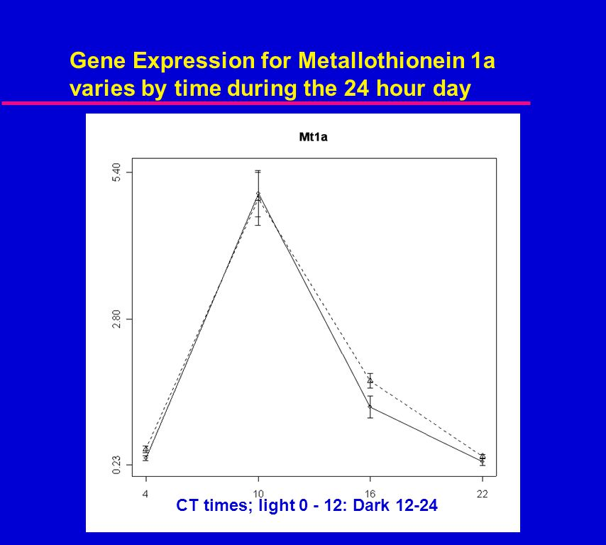 Gene Expression for Metallothionein 1a