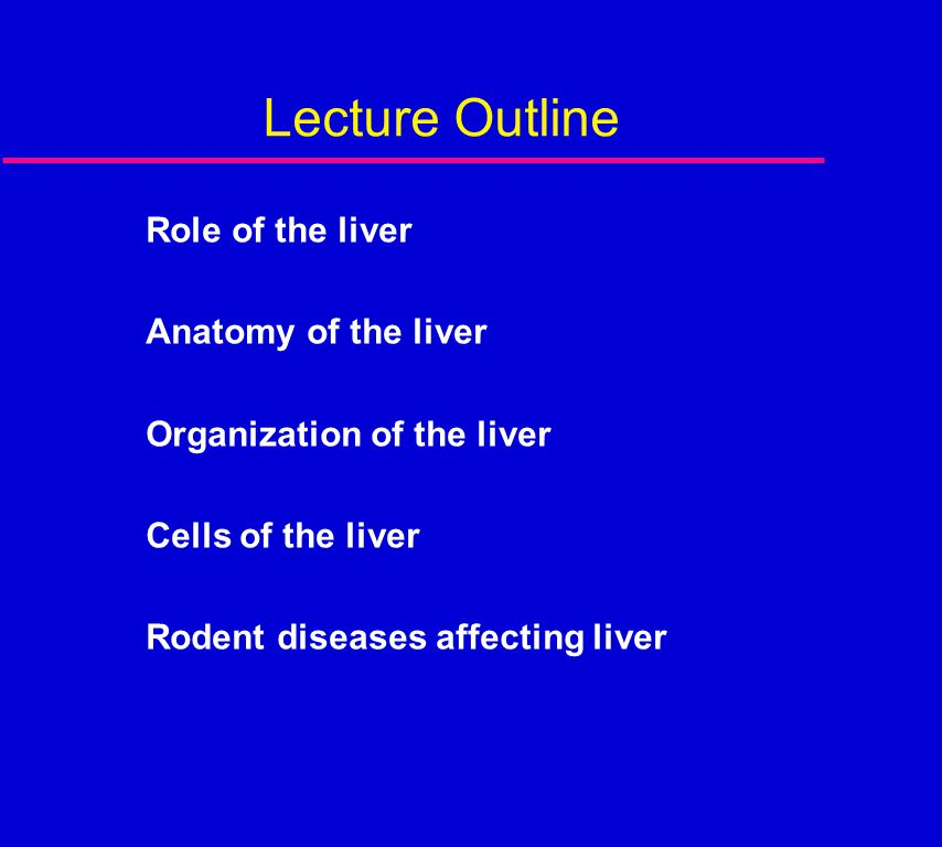 Lecture Outline Role of the liver Anatomy of the liver