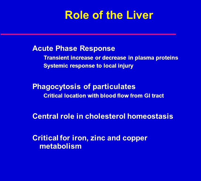Role of the Liver Acute Phase Response Phagocytosis of particulates