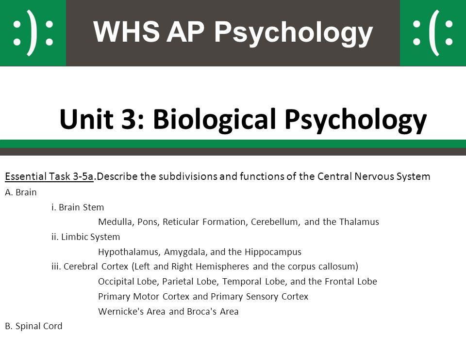 Unit 3: Biological Psychology