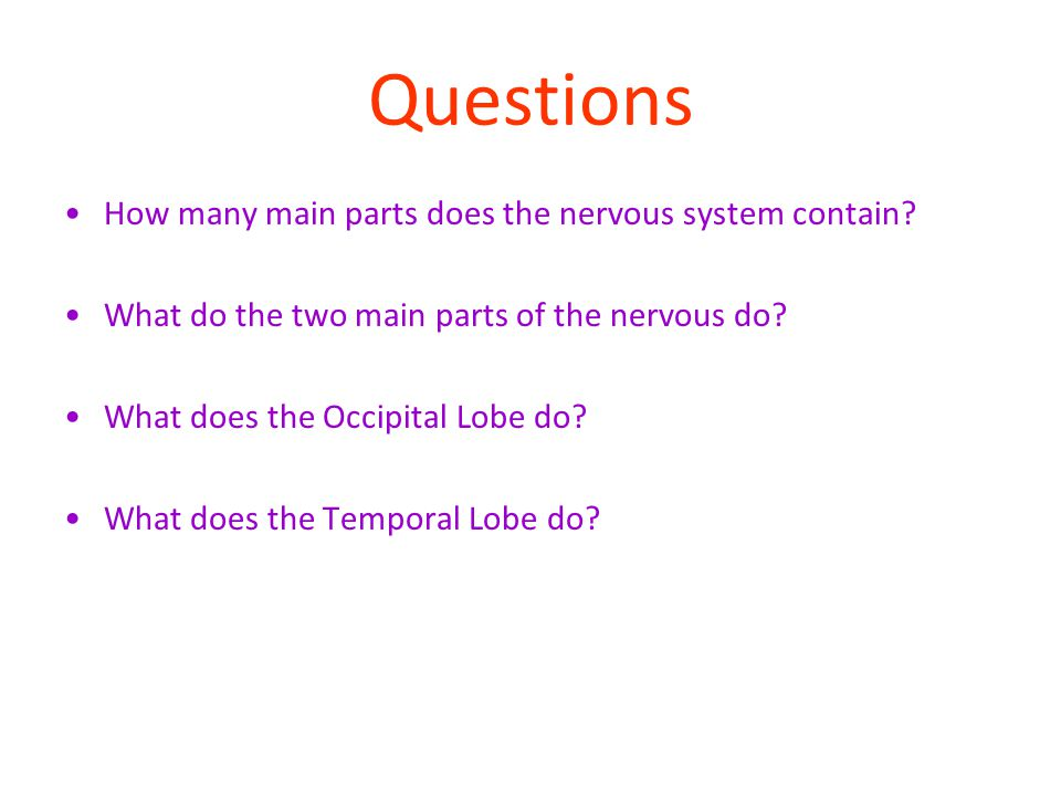 Questions How many main parts does the nervous system contain