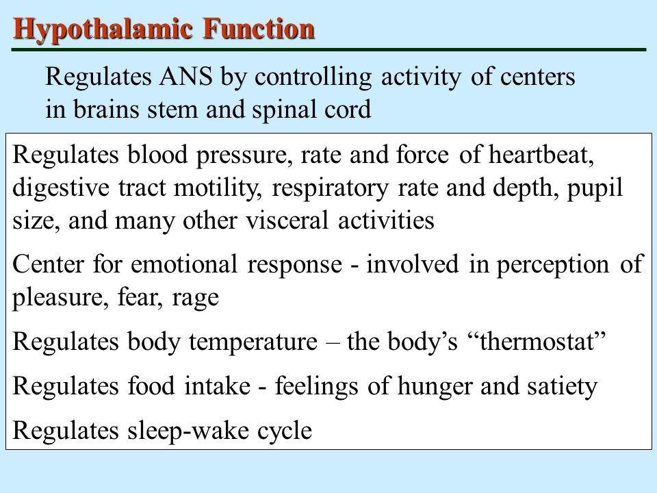Hypothalamic Function