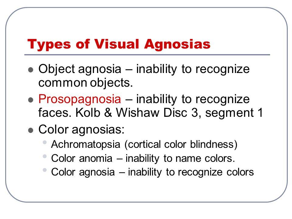 Types of Visual Agnosias