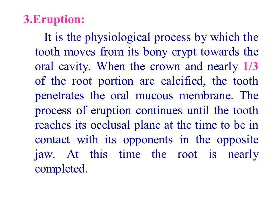 3.Eruption: