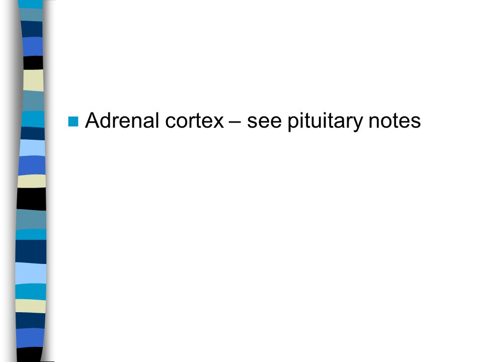 Adrenal cortex – see pituitary notes