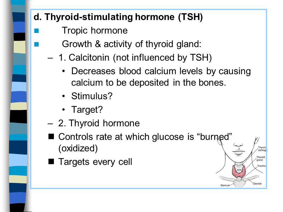 d. Thyroid-stimulating hormone (TSH)
