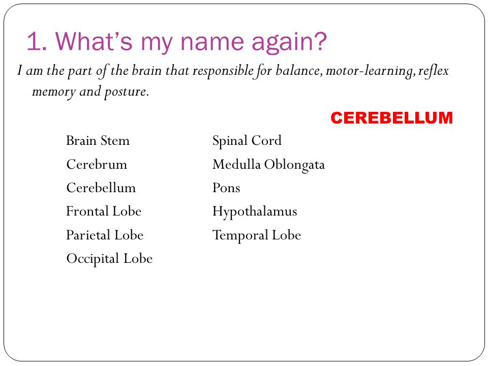 1. What's my name again I am the part of the brain that responsible for balance, motor-learning, reflex memory and posture.