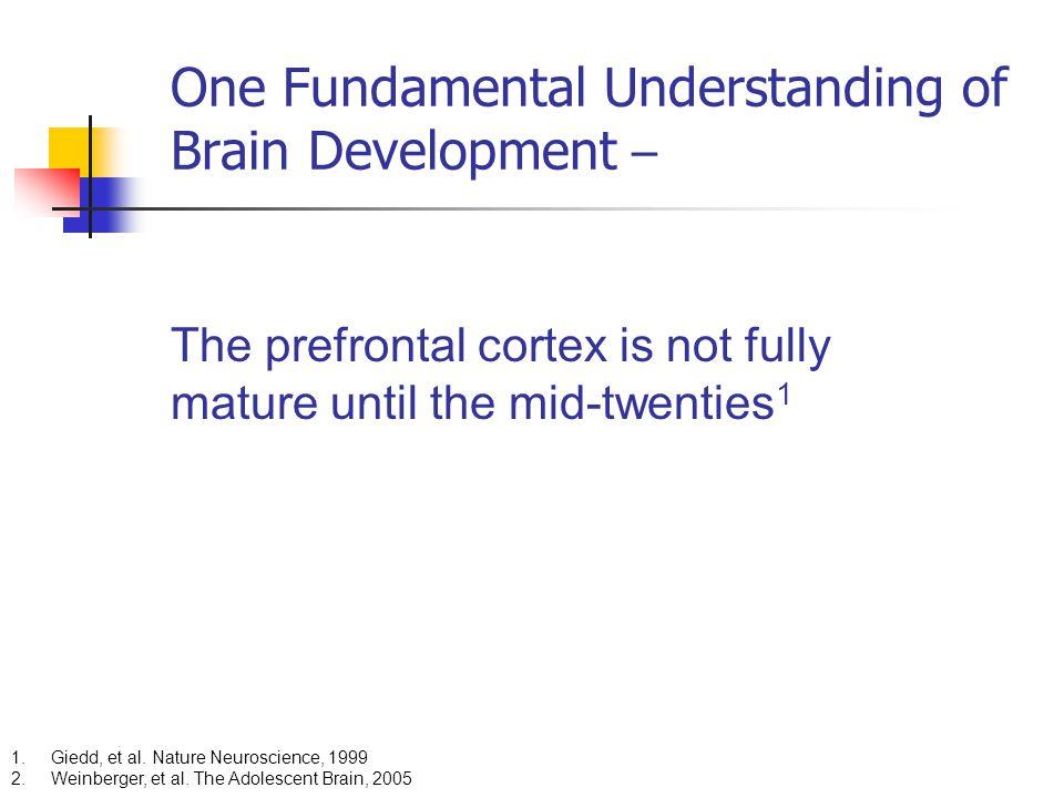One Fundamental Understanding of Brain Development –