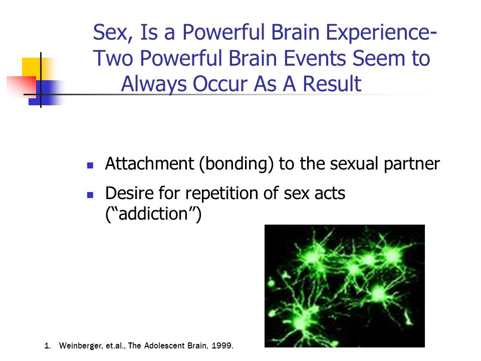Sex, Is a Powerful Brain Experience- Two Powerful Brain Events Seem to