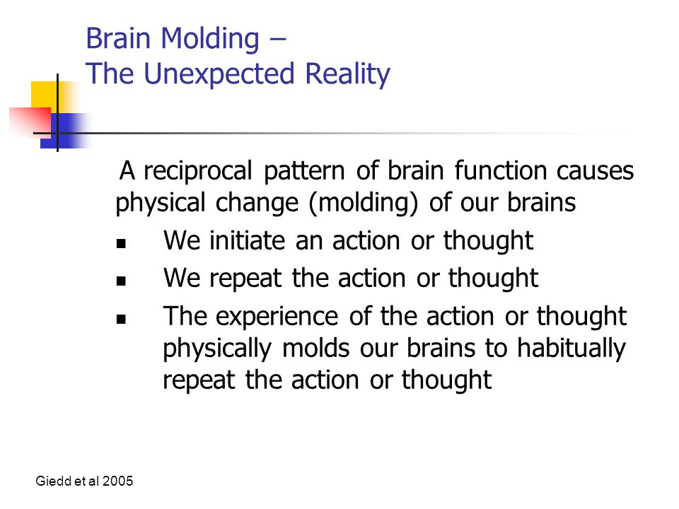 Brain Molding – The Unexpected Reality