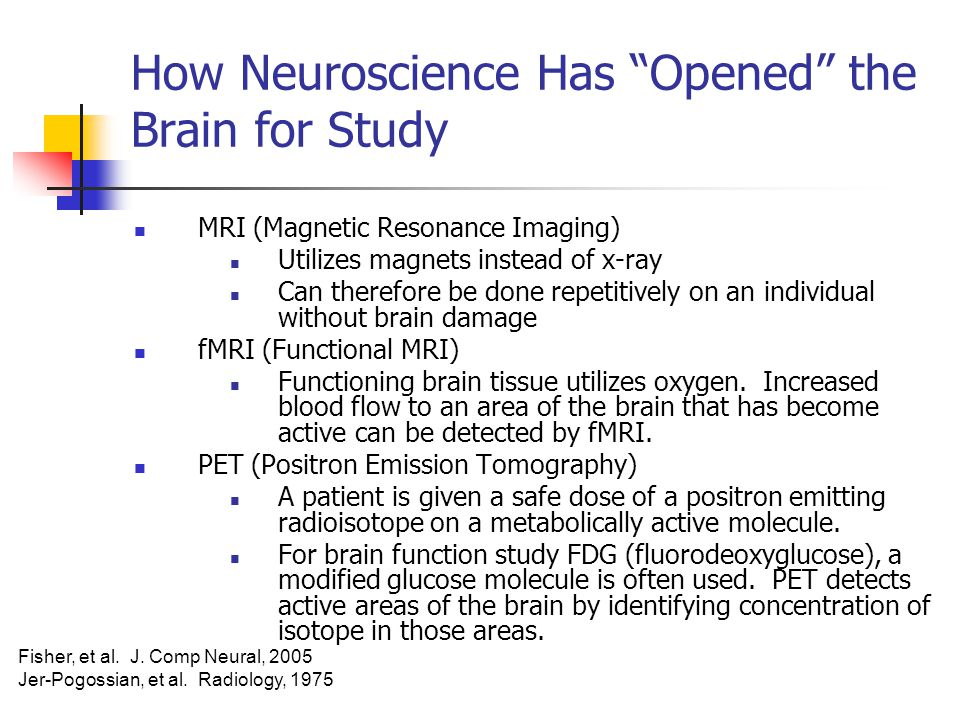 How Neuroscience Has Opened the Brain for Study