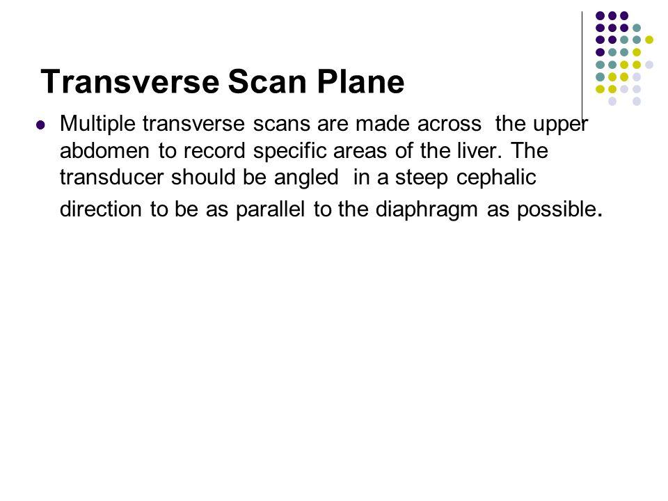 Transverse Scan Plane