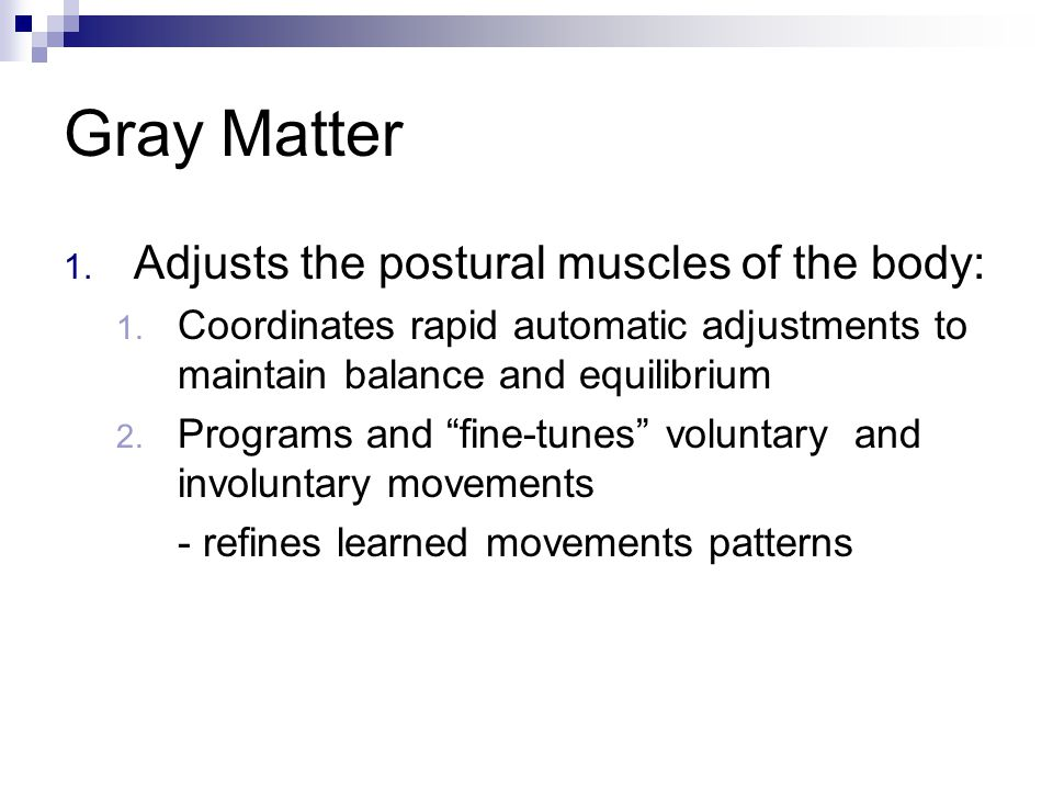 Gray Matter Adjusts the postural muscles of the body: