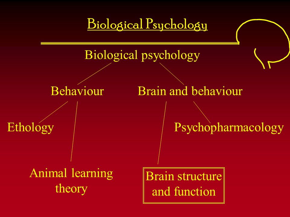 Biological Psychology