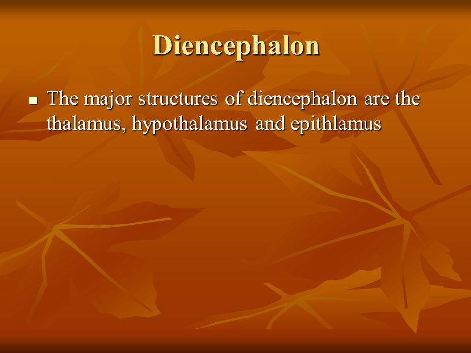 Diencephalon The major structures of diencephalon are the thalamus, hypothalamus and epithlamus