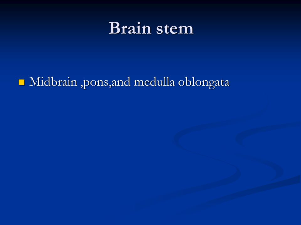 Brain stem Midbrain ,pons,and medulla oblongata